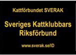 banner_liggande_vitkant_300px